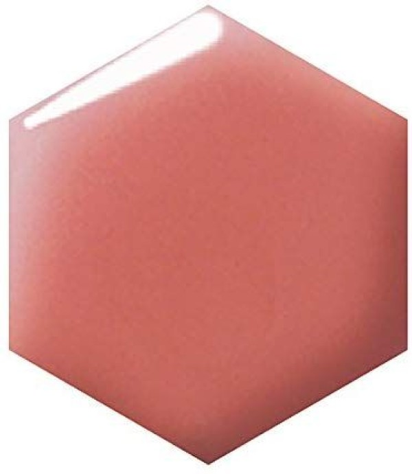 Shiseido Integrate Glamorous Rouge Lip Gloss