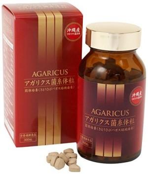 Agaricus Mycelium Grains