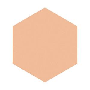 Shiseido INTEGRATE GRACY Moisture Cream Foundation SPF22 PA ++